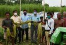পাট চাষীদের সমস্যাগুলি সমাধান করতে পশ্চিমবঙ্গ সরকারের আতমা প্রকল্প